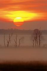 Bekijk meer foto's van Natuurgebieden in België