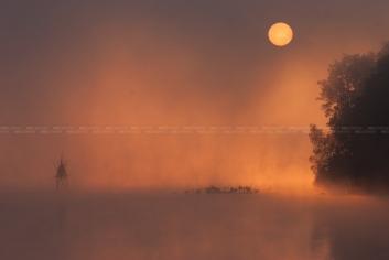 Zonsondergang boven lac des Virelles