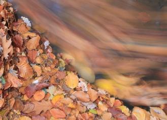 Herfstbladeren spoelen weg