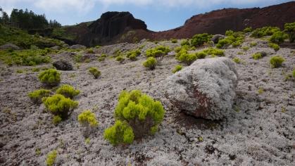 Bekijk meer foto's van Azoren